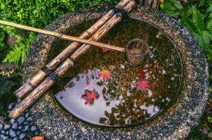 cómo hacer un jardín japonés